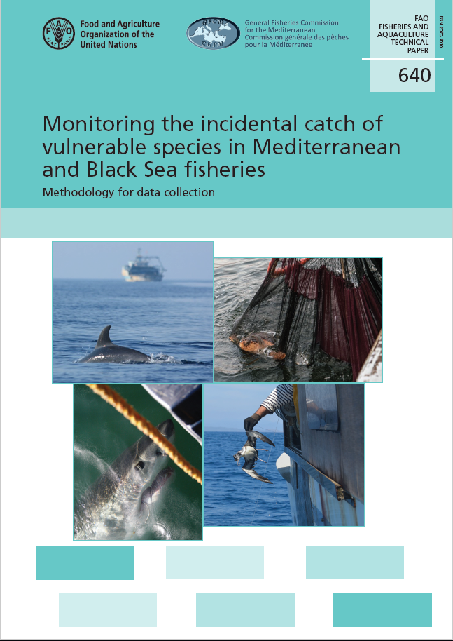 Monitoring incidental catch of vulnerable species in the Mediterranean and the Black Sea: methodology for data collection